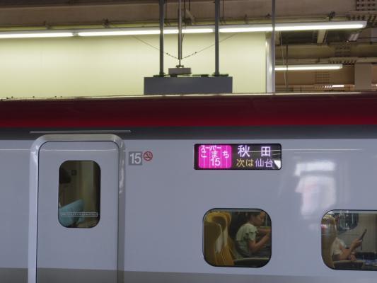 IMGP1306.jpg