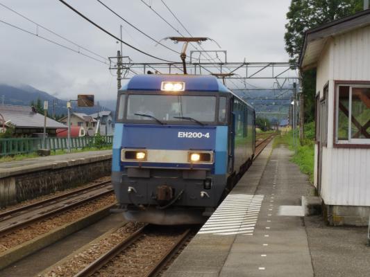 IMGP1900.jpg