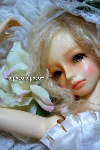 04_20091217010526.jpg