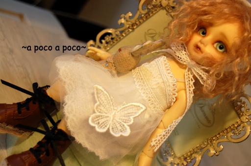 popo_20091201203234.jpg