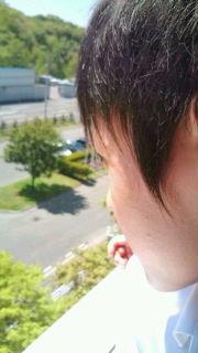 20100531132203.jpg