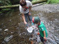渓流で水遊び