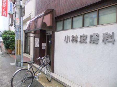2010_11010002.jpg
