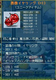 晒し薔薇さん