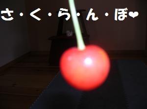 DSCN1285_convert_20100704165606.jpg