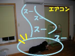 DSCN1297_convert_20100705205352.jpg