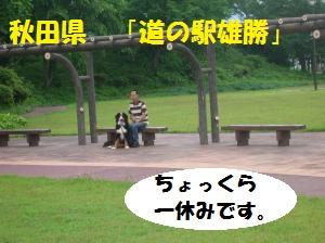 DSCN1313_convert_20100710165533.jpg