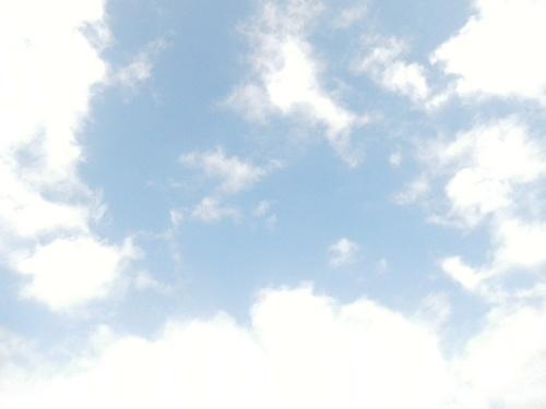 DSCN5816.jpg