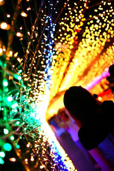 「光のトンネル」