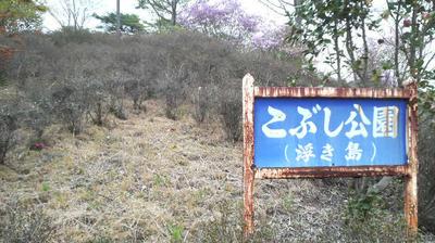ekobushi01.jpg