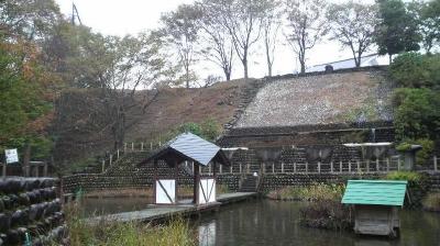 gsurusumi07.jpg