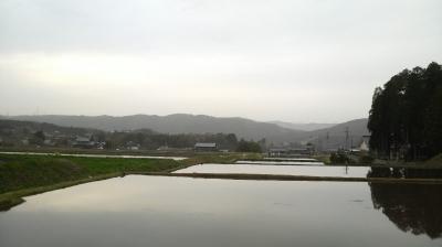 iwamura28.jpg