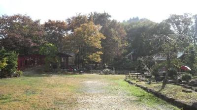 kamokuikoi03.jpg