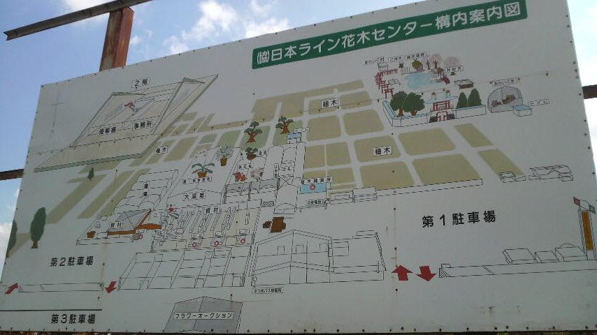 kamokuikoi08.jpg