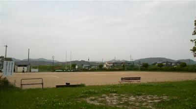 mushirodakiku03.jpg