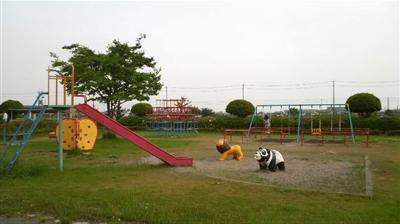 mushirodakiku06.jpg