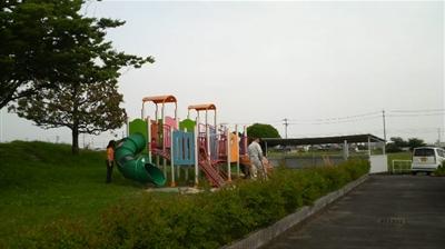 mushirodakiku08.jpg