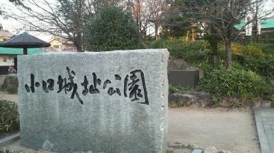 oguchijyoshi01.jpg