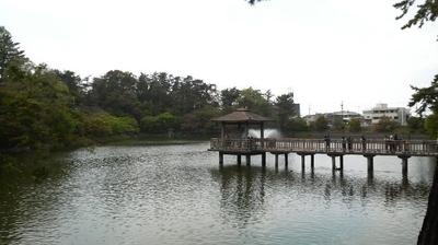 ohigashi13.jpg