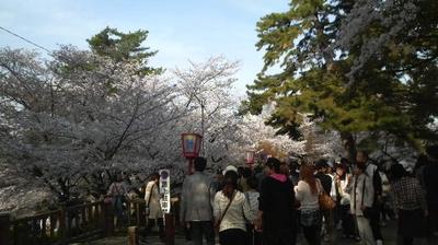 okazaki06.jpg