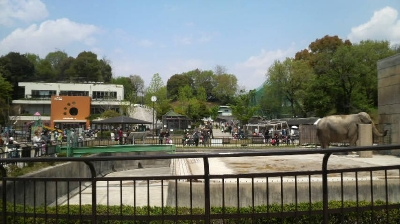 okazakihi19.jpg