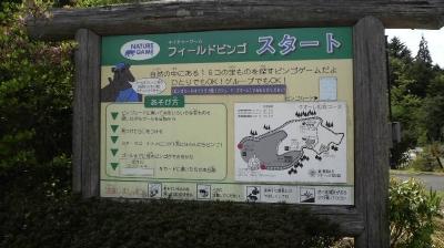sasahara11.jpg