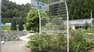 shikokukaori04.jpg