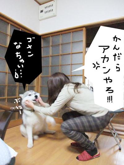 Boss_2.jpg