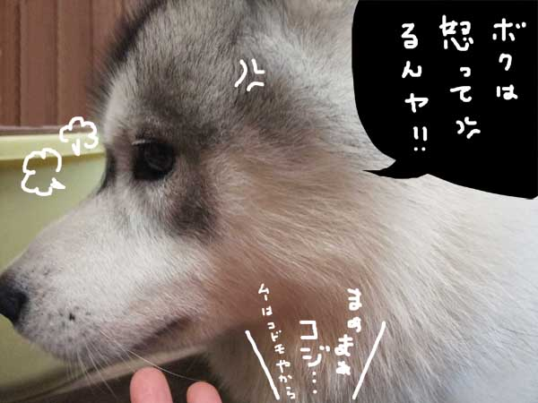 oshirimakura07.jpg