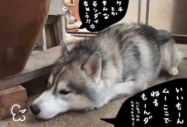 oshirimakura09.jpg