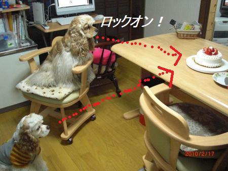 005_convert_20100217212730.jpg