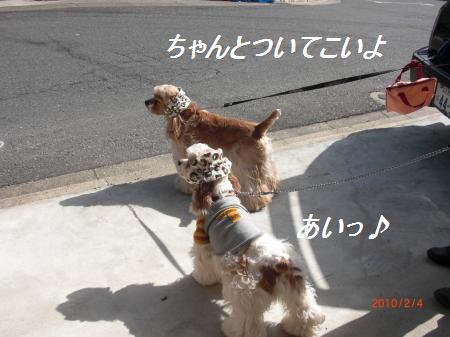 008_convert_20100204194538.jpg