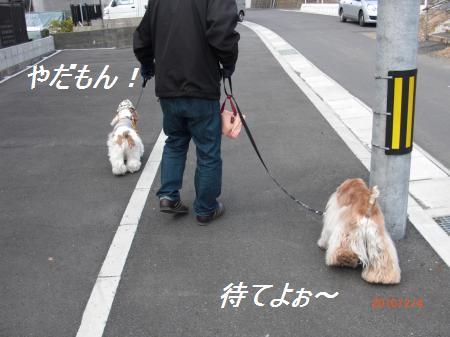 010_convert_20100204194744.jpg