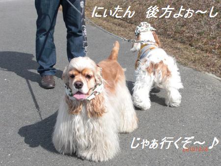 012_convert_20100204194857.jpg