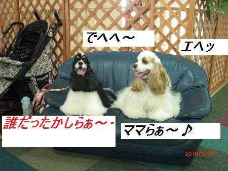 022_convert_20100921195305.jpg