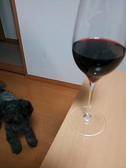 Getしたワイングラスで