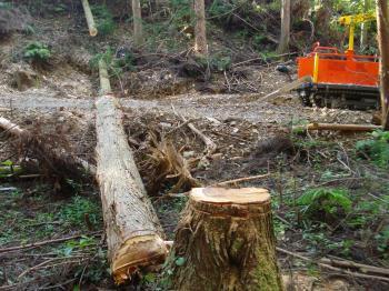 森林作業車出動