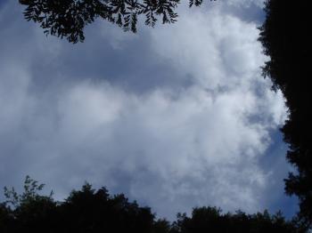 10月の雲1