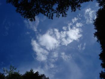 10月の雲2