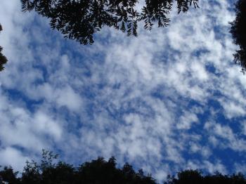 10月の雲3