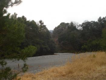 杉川の河原