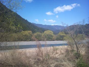 春の気田川1
