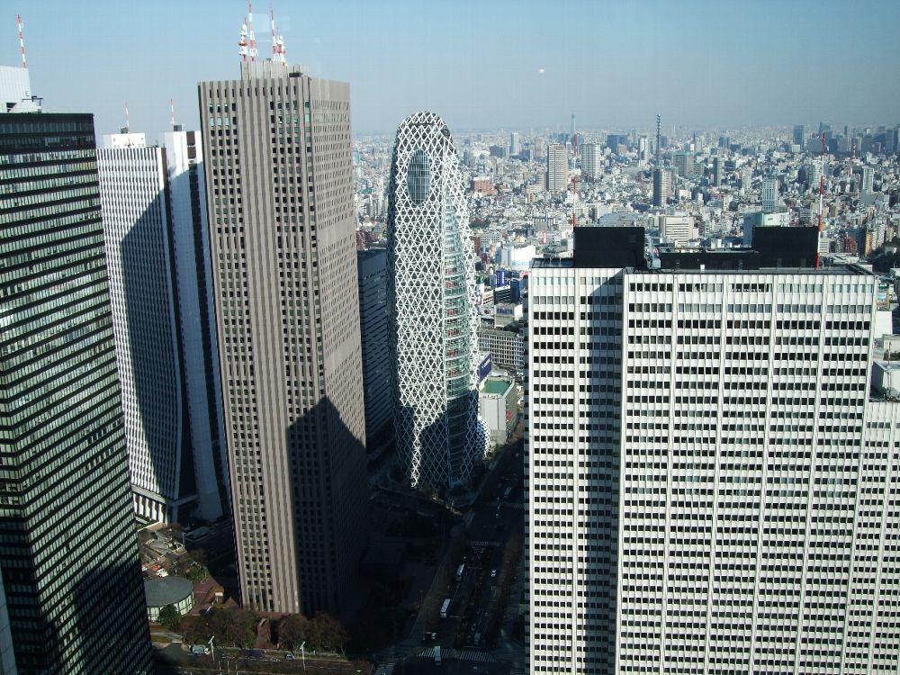 都庁から東コクーンタワー