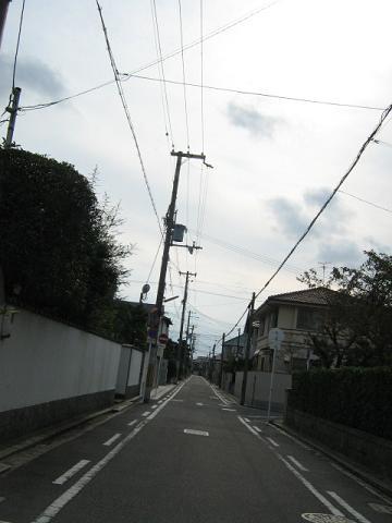 20091115p4.jpg