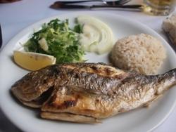 トルコ(1)ランチ鯛