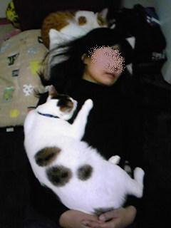 20100306_052.jpg