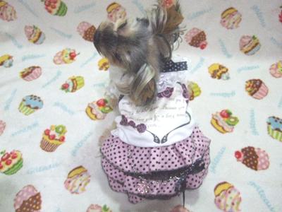 buro17_20110927191757.jpg
