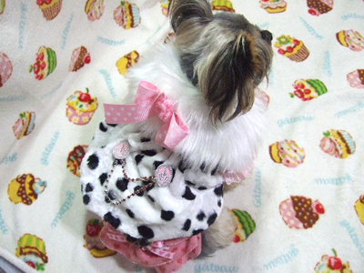 buro32_20110927204255.jpg