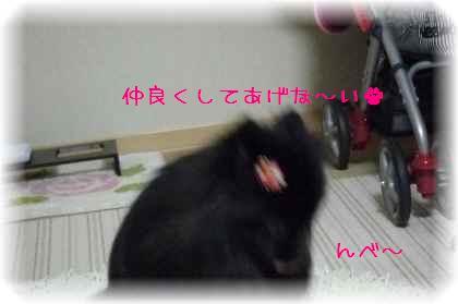 姫ちゃんを襲撃6