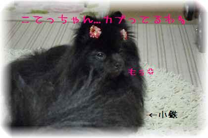 姫ちゃんを襲撃7